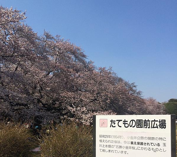 2015-03-30 13.46.15